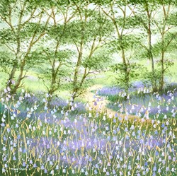 Bluebell Woods by Mary Shaw - Original Painting on Board sized 18x18 inches. Available from Whitewall Galleries